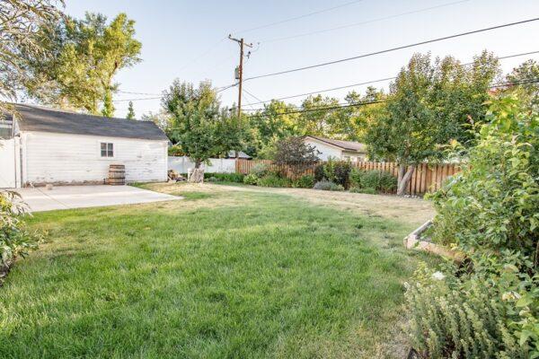 017_Backyard